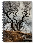 Bare Tree On The Hill Spiral Notebook