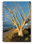 Bare Tree On The Spit Spiral Notebook