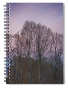 Bare Trees And Autumn Sky Spiral Notebook