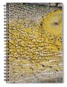 Bark Art Spiral Notebook