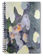 Bark Beauty Spiral Notebook