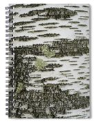 Bark Of Paper Birch Spiral Notebook
