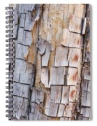 Bark On A Tree In The Desert In Sedona Spiral Notebook