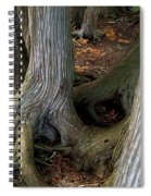 Barky Barky Trees Spiral Notebook