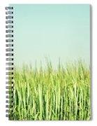 Barley Spiral Notebook
