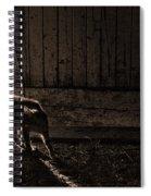 Barn Cat Spiral Notebook