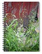 Barn Kitten Spiral Notebook