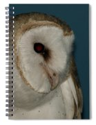 Barn Owl 2 Spiral Notebook
