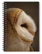 Barn Owl 3 Spiral Notebook