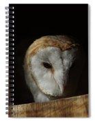 Barn Owl 5 Spiral Notebook