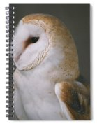 Barn Owl Spiral Notebook