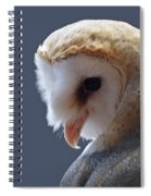 Barn Owl Dry Brushed Spiral Notebook