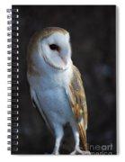 Barn Owl Spiral Notebook