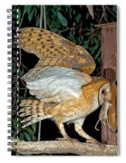 Barn Owl With Prey Spiral Notebook