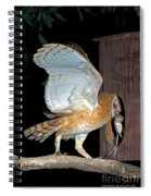 Barn Owl With Rat Spiral Notebook