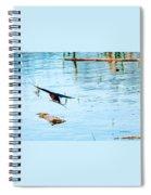 Barn Swallow In Flight Spiral Notebook