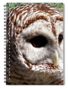Barred Owl 2 Spiral Notebook
