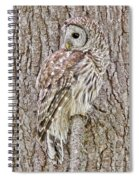 Barred Owl Camouflage Spiral Notebook