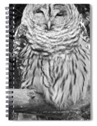 Barred Owl In Black And White Spiral Notebook