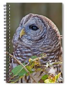 Barred Owl  Spiral Notebook
