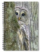 Barred Owl Peek A Boo Spiral Notebook