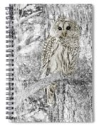 Barred Owl Snowy Day In The Forest Spiral Notebook