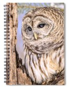 Barred Owl Watch Spiral Notebook