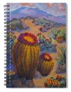 Barrel Cactus In Warm Light Spiral Notebook