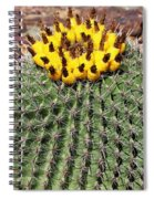 Barrel Cactus With Yellow Fruit Spiral Notebook