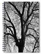 Barren 2 Bw Spiral Notebook