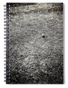 Baseball Field 4 Spiral Notebook
