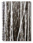 Basic Bull Rush Spiral Notebook