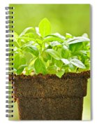 Basil Spiral Notebook