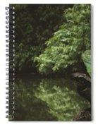 Basilisk Lizard Spiral Notebook