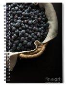 Basket Full Fresh Picked Blueberries Spiral Notebook