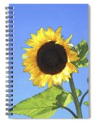 Basking In The Sunlight Spiral Notebook