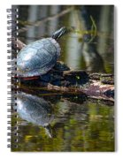Basking Turtle Spiral Notebook