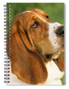 Basset Hound Dog Spiral Notebook