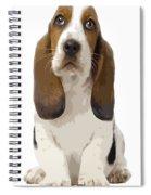 Basset Hound Puppy Spiral Notebook