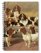 Basset Hounds In A Kennel Spiral Notebook