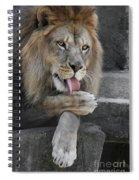 Bath Time Spiral Notebook