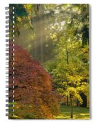 Bathed In Morning Light Spiral Notebook