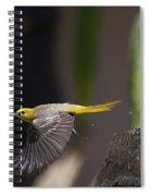 Bathed Spiral Notebook