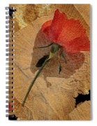 Bats And Roses Spiral Notebook