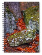 Battlefield In Fall Colors Spiral Notebook