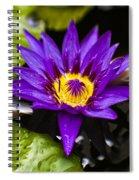 Bayou Beauty Spiral Notebook