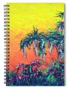 Bayou Honeymoon Spiral Notebook