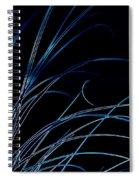 Beach Grass Abstract Spiral Notebook