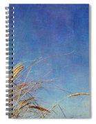 Beach Grass In The Wind Spiral Notebook