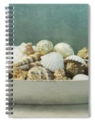 Beach In A Bowl Spiral Notebook